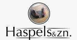 Haspels & Zn.